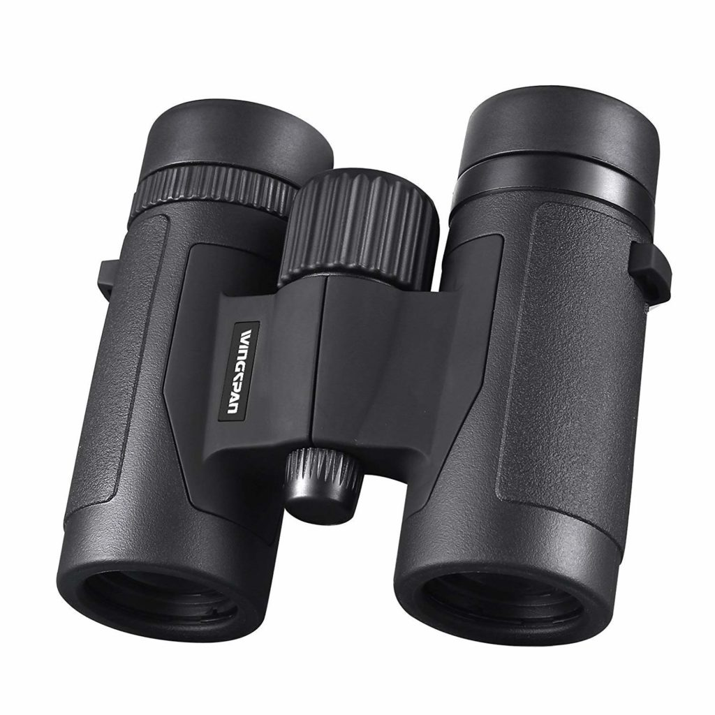 3 Binoculars That Are Perfect For Stargazing